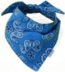 Wholesale BANDANAs Assorted Colors to a case